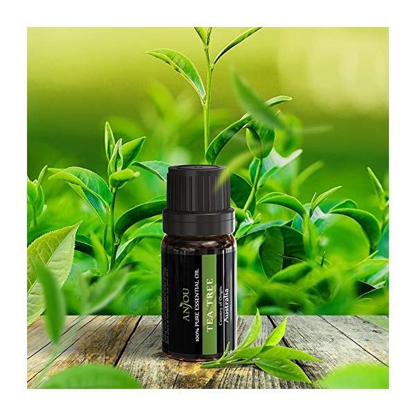 Anjou AJ-ES001 6-féle illat, illóolaj csomag - 7