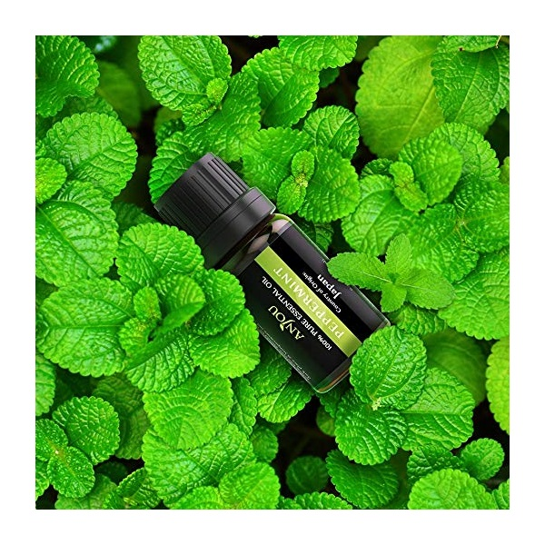 Anjou AJ-ES001 6-féle illat, illóolaj csomag - 9