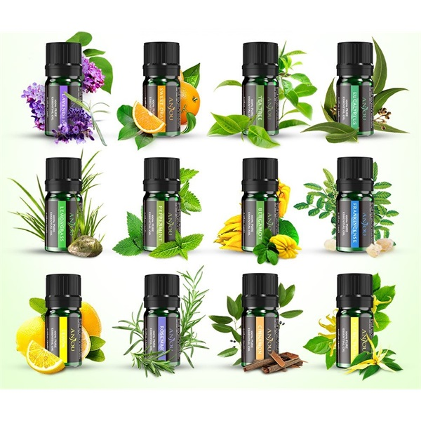 Anjou AJ-PCN013 12-féle illat illóolaj csomag - 3