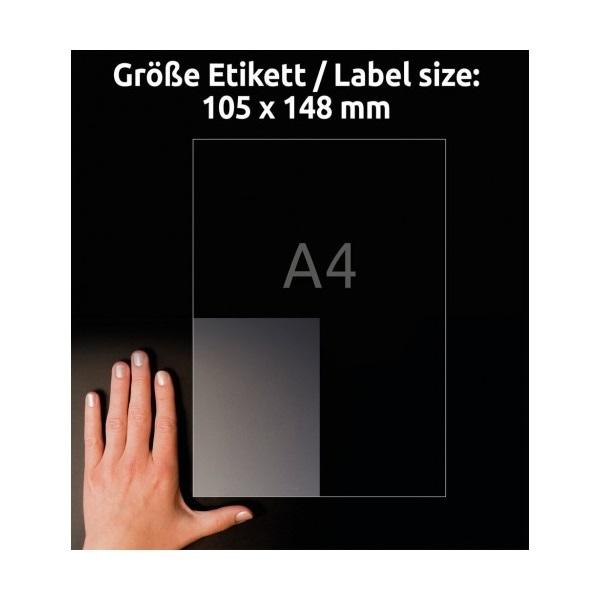 Avery L8013-10 antimikrobiális 105x148mm átlátszó fóliacímke - 3