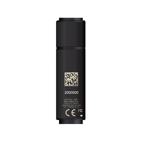 DataLocker 4GB USB3.0 SafeStick Managed (SS004M) Flash Drive - 1