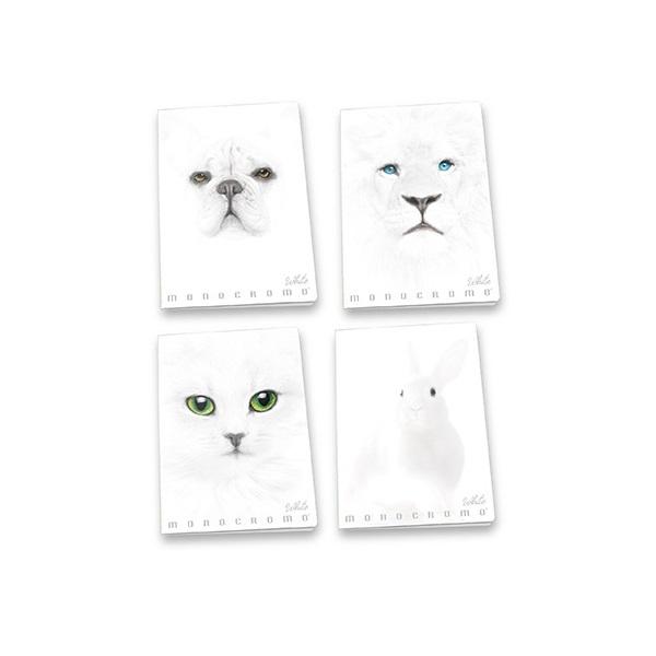 Pigna Monocromo White A4 38lapos kockás füzet - 1