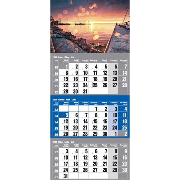 Realsystem 2021-es 6061-42 Magyarország 12lapos kék speditőr naptár - 1