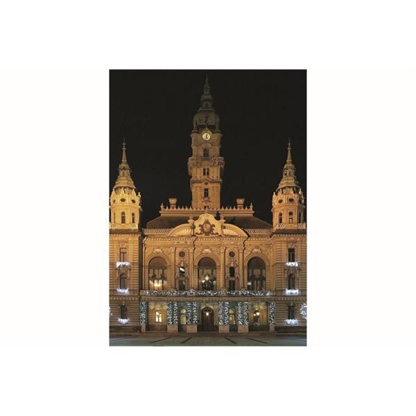 Realsystem 2021-es Magyarország 7991 képes zöld asztali naptár - 4
